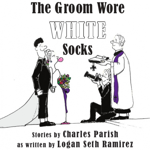 The Groom Wore White Socks Book Cover
